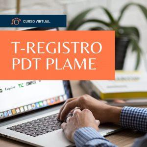 curso virtual T-REGISTRO PDT PLAME