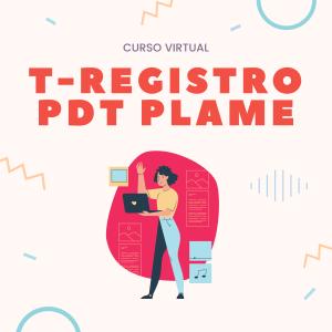 curso virtual t-registro y pdt plame